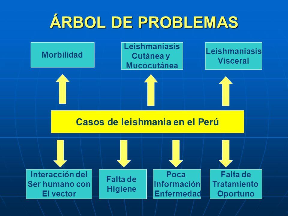 ÁRBOL DE PROBLEMAS Casos de leishmania en el Perú Morbilidad Leishmaniasis Cutánea y Mucocutánea Leishmaniasis Visceral Interacción del Ser humano con