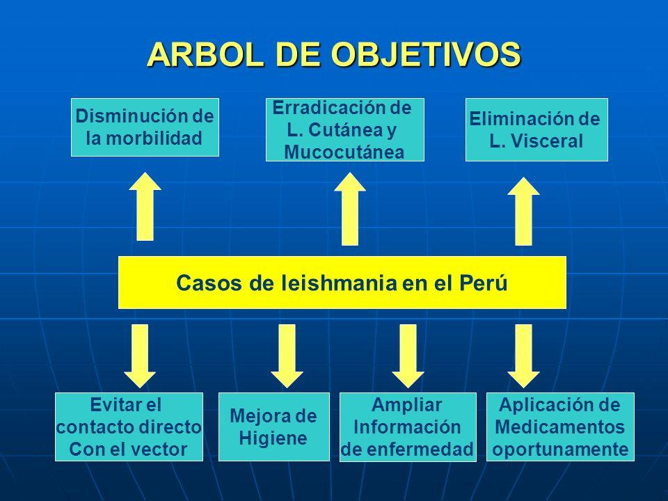 ARBOL DE OBJETIVOS Casos de leishmania en el Perú Disminución de la morbilidad Erradicación de L. Cutánea y Mucocutánea Eliminación de L. Visceral Evi