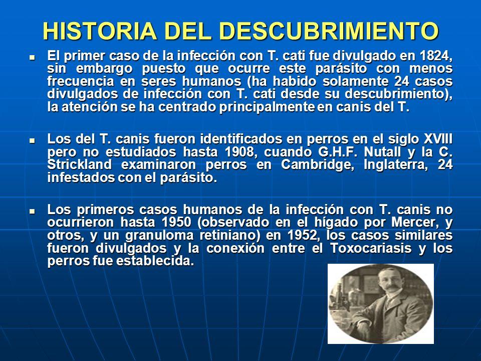 HISTORIA DEL DESCUBRIMIENTO El primer caso de la infección con T. cati fue divulgado en 1824, sin embargo puesto que ocurre este parásito con menos fr