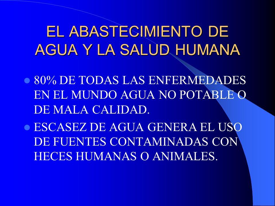 EL ABASTECIMIENTO DE AGUA Y LA SALUD HUMANA 80% DE TODAS LAS ENFERMEDADES EN EL MUNDO AGUA NO POTABLE O DE MALA CALIDAD.