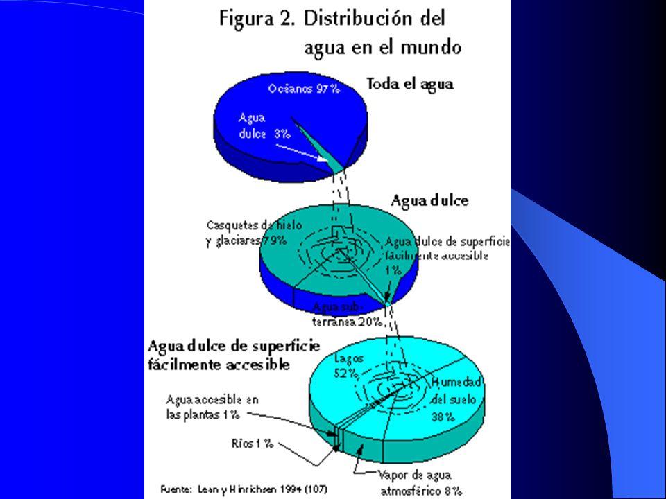 CALIDAD BACTERIOLOGICA BACTERIAS INDICADORAS ADECUADAS DE CONTAMINACION FECAL : BACTERIAS INDICADORAS ADECUADAS DE CONTAMINACION FECAL : Escherichia coli.
