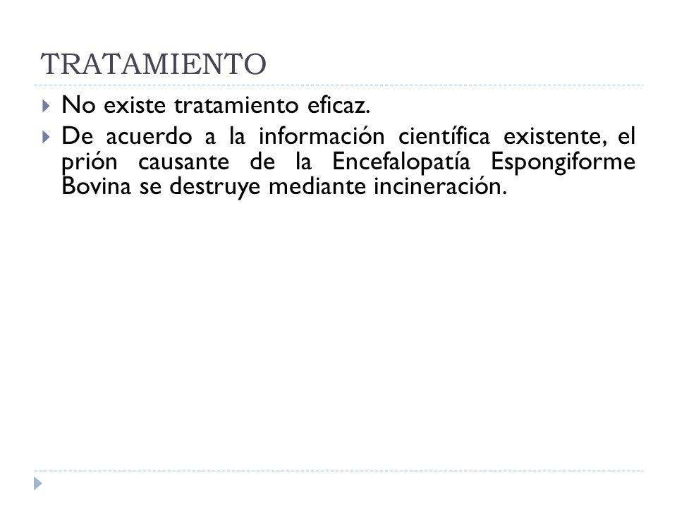 TRATAMIENTO No existe tratamiento eficaz. De acuerdo a la información científica existente, el prión causante de la Encefalopatía Espongiforme Bovina