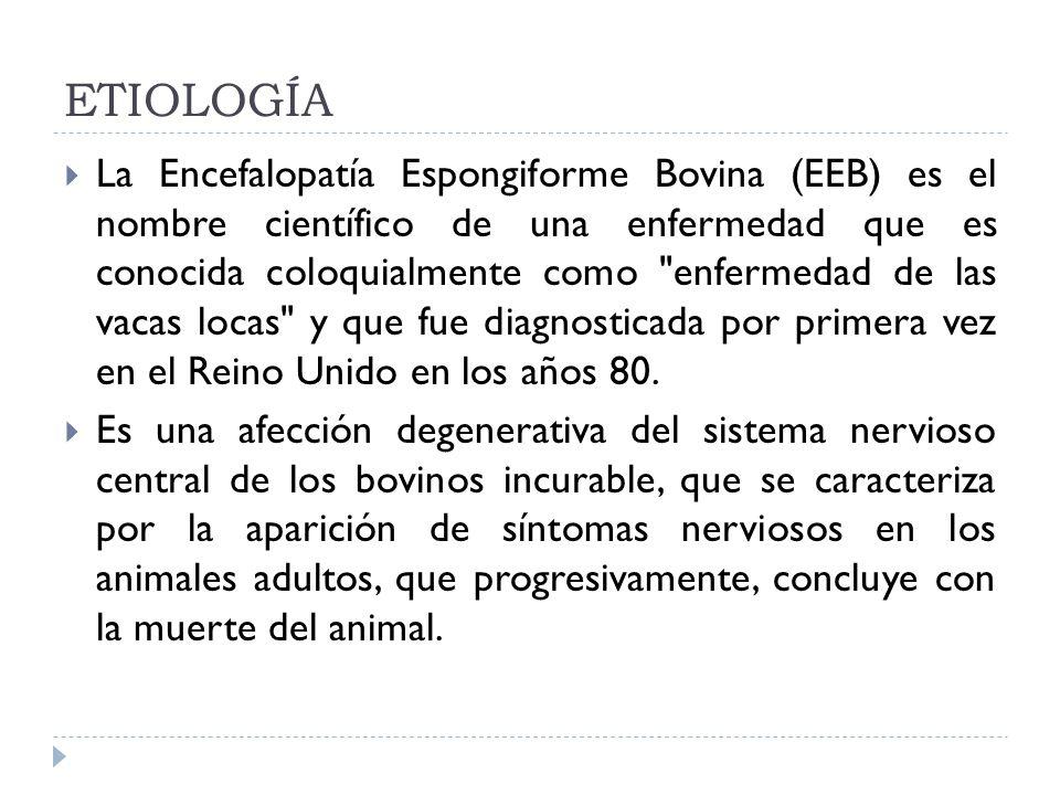 ETIOLOGÍA La Encefalopatía Espongiforme Bovina (EEB) es el nombre científico de una enfermedad que es conocida coloquialmente como