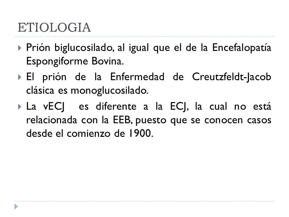 ETIOLOGIA Prión biglucosilado, al igual que el de la Encefalopatía Espongiforme Bovina. El prión de la Enfermedad de Creutzfeldt-Jacob clásica es mono