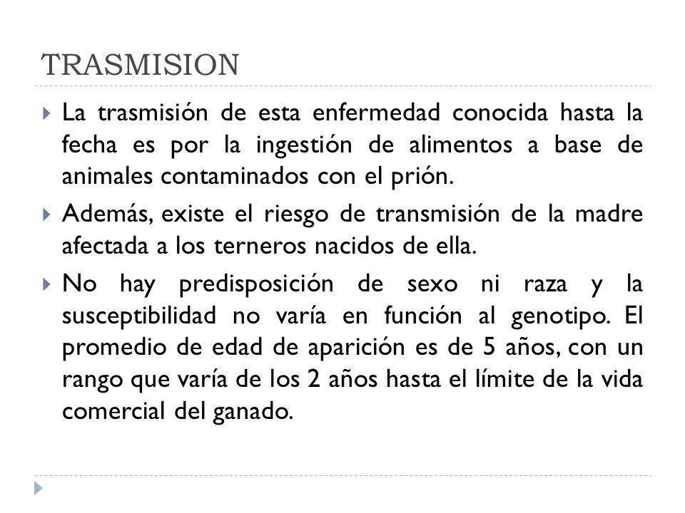 TRASMISION La trasmisión de esta enfermedad conocida hasta la fecha es por la ingestión de alimentos a base de animales contaminados con el prión. Ade