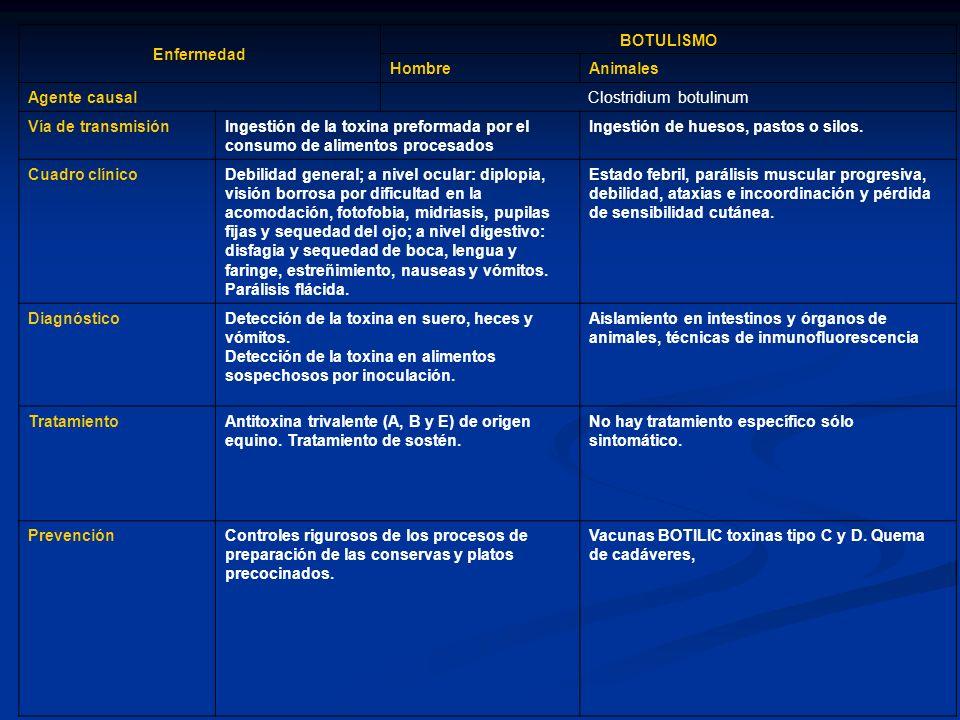 Enfermedad BOTULISMO HombreAnimales Agente causal Clostridium botulinum Vía de transmisiónIngestión de la toxina preformada por el consumo de alimento