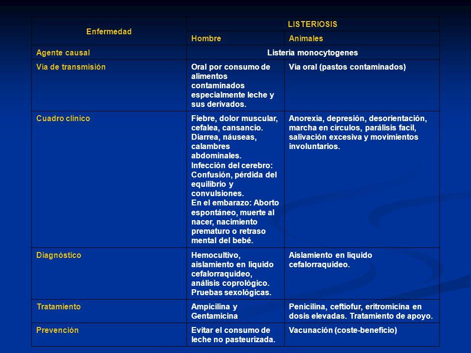 Enfermedad LISTERIOSIS HombreAnimales Agente causal Listeria monocytogenes Vía de transmisiónOral por consumo de alimentos contaminados especialmente
