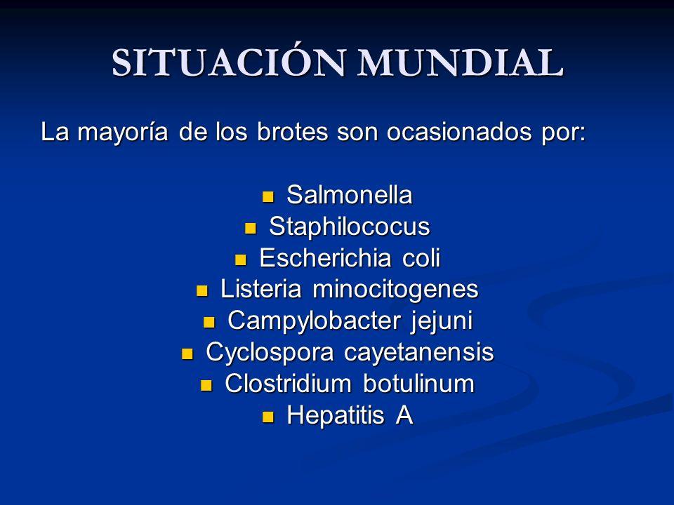 SITUACIÓN MUNDIAL La mayoría de los brotes son ocasionados por: Salmonella Salmonella Staphilococus Staphilococus Escherichia coli Escherichia coli Li