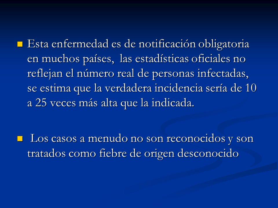 Enfermedad BRUCELOSIS HombreAnimales Agente causalB.