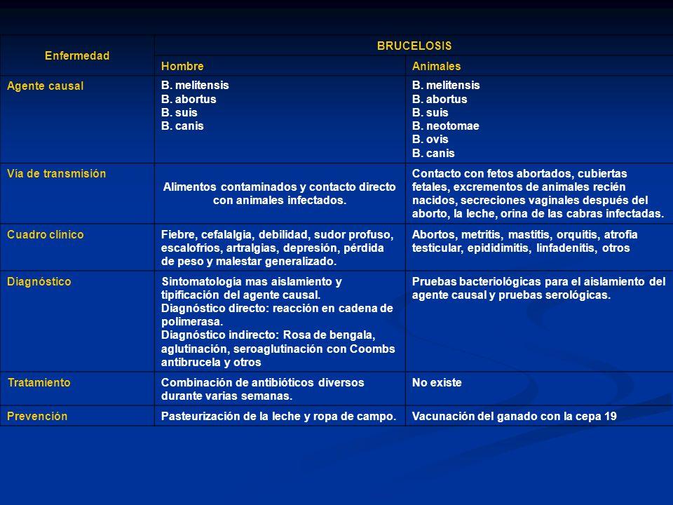 Enfermedad LISTERIOSIS HombreAnimales Agente causal Listeria monocytogenes Vía de transmisiónOral por consumo de alimentos contaminados especialmente leche y sus derivados.
