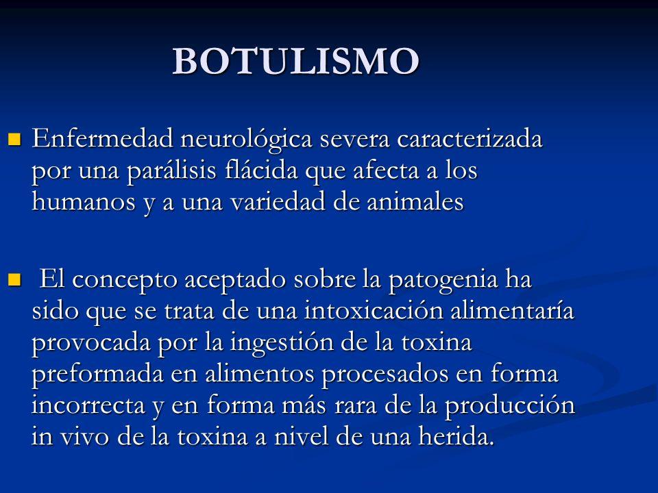 BOTULISMO Enfermedad neurológica severa caracterizada por una parálisis flácida que afecta a los humanos y a una variedad de animales Enfermedad neuro