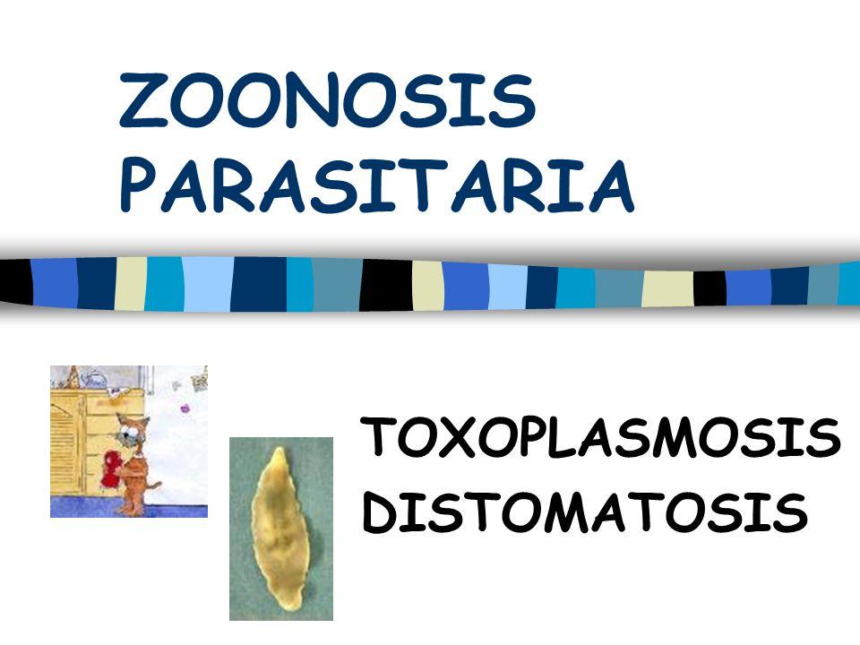 ZOONOSIS PARASITARIA TOXOPLASMOSIS DISTOMATOSIS