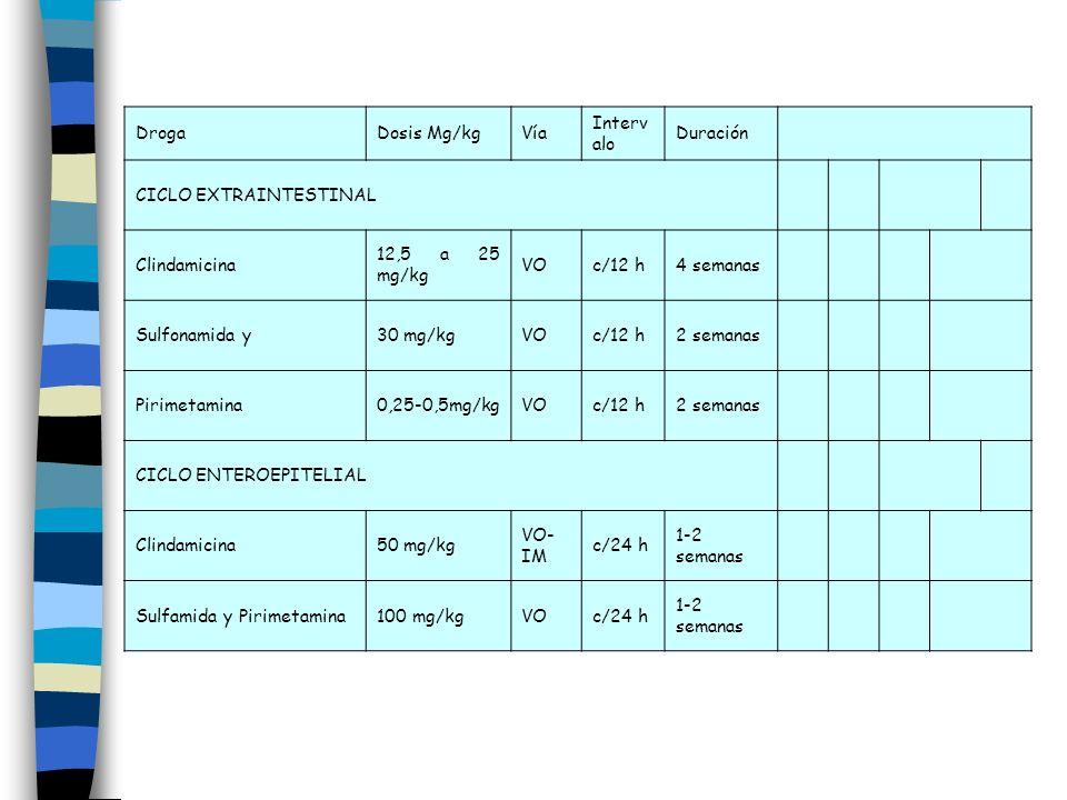 DrogaDosis Mg/kgVía Interv alo Duración CICLO EXTRAINTESTINAL Clindamicina 12,5 a 25 mg/kg VOc/12 h4 semanas Sulfonamida y30 mg/kgVOc/12 h2 semanas Pi