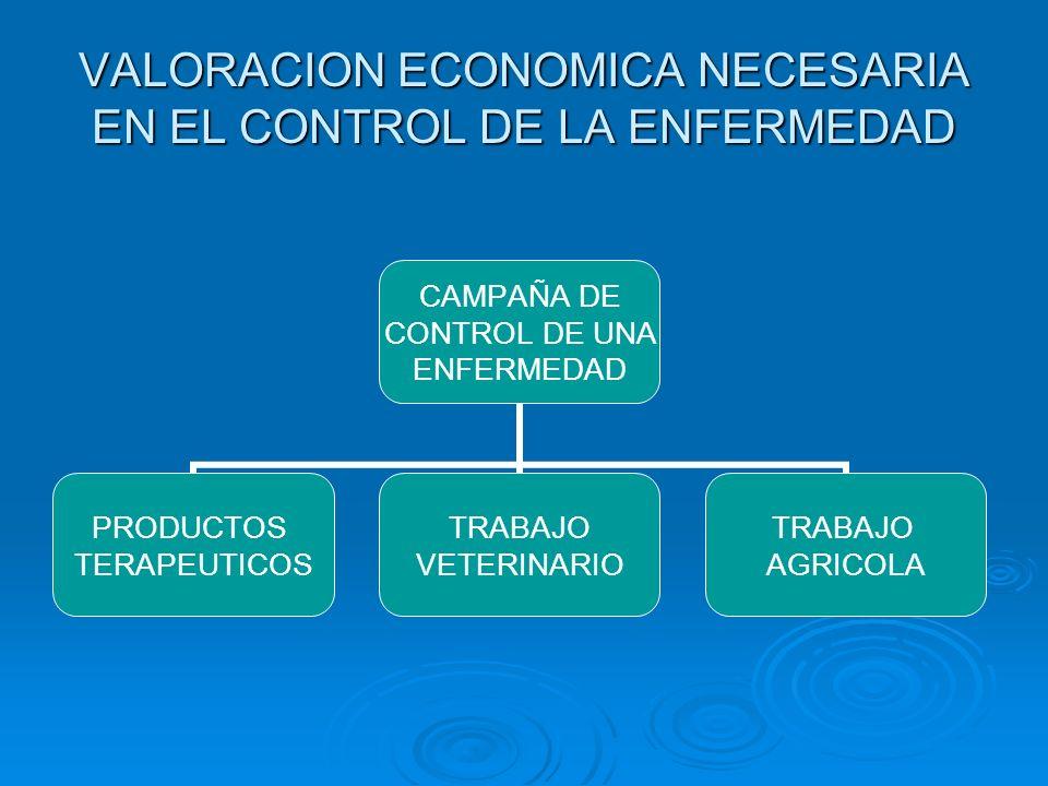 VALORACION ECONOMICA NECESARIA EN EL CONTROL DE LA ENFERMEDAD CAMPAÑA DE CONTROL DE UNA ENFERMEDAD PRODUCTOS TERAPEUTICOS TRABAJO VETERINARIO TRABAJO AGRICOLA