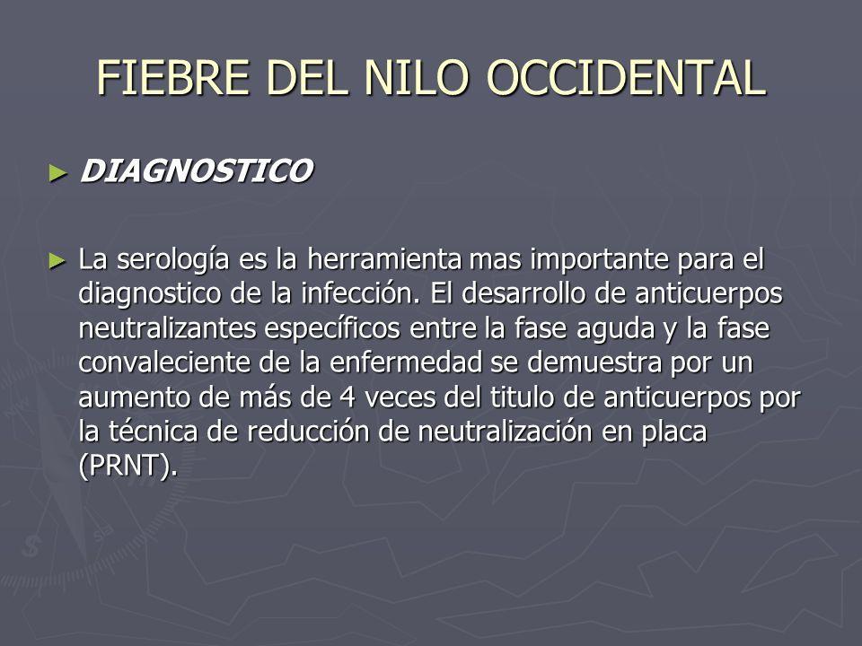 FIEBRE DEL NILO OCCIDENTAL DIAGNOSTICO DIAGNOSTICO La serología es la herramienta mas importante para el diagnostico de la infección. El desarrollo de