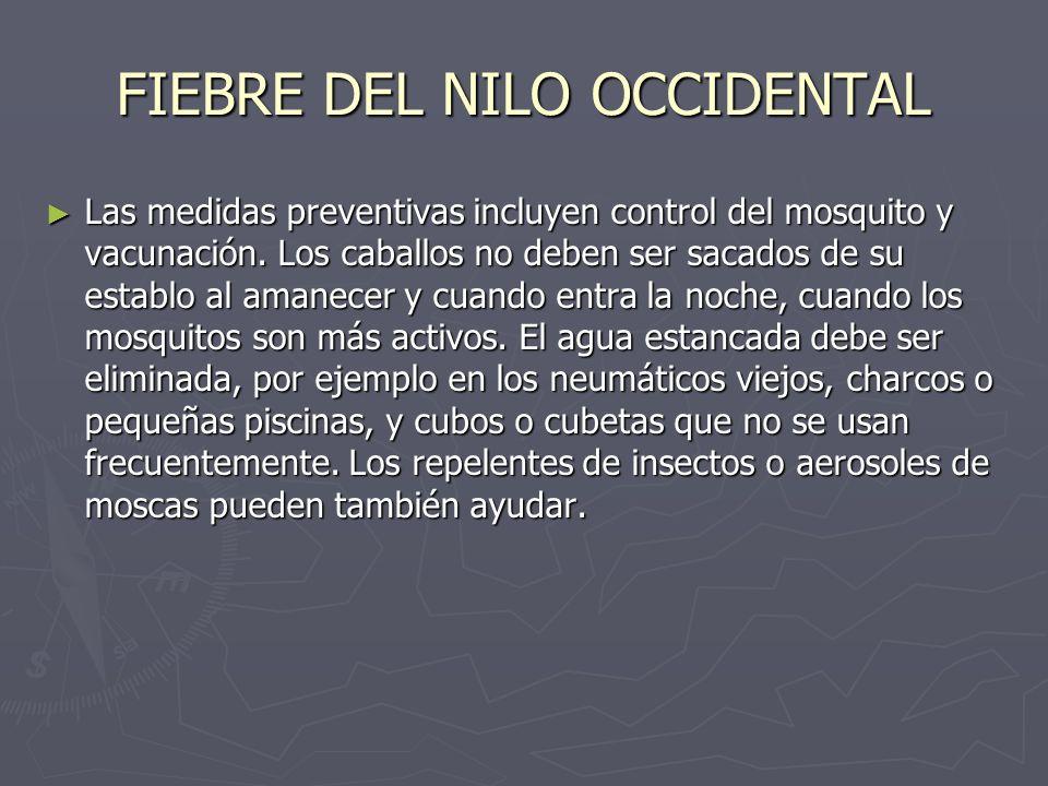 FIEBRE DEL NILO OCCIDENTAL Las medidas preventivas incluyen control del mosquito y vacunación. Los caballos no deben ser sacados de su establo al aman