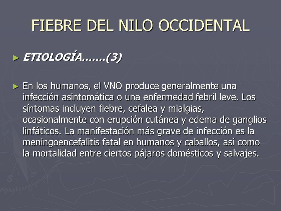 FIEBRE DEL NILO OCCIDENTAL ETIOLOGÍA…….(3) ETIOLOGÍA…….(3) En los humanos, el VNO produce generalmente una infección asintomática o una enfermedad feb