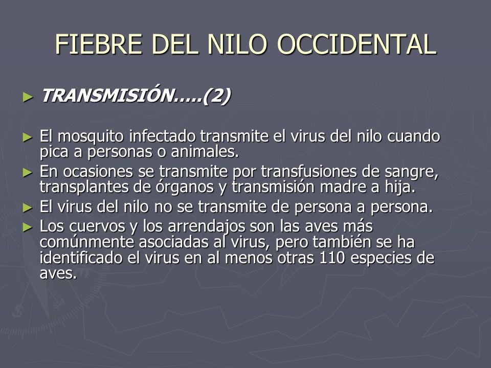 FIEBRE DEL NILO OCCIDENTAL TRANSMISIÓN…..(2) TRANSMISIÓN…..(2) El mosquito infectado transmite el virus del nilo cuando pica a personas o animales. El