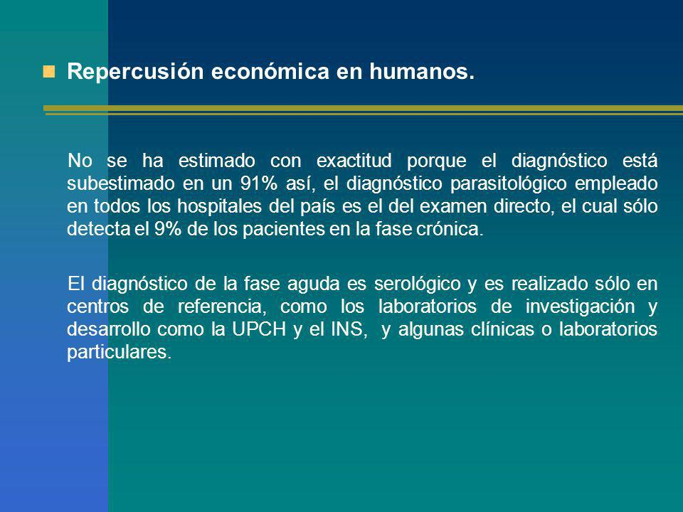 Repercusión económica en humanos. No se ha estimado con exactitud porque el diagnóstico está subestimado en un 91% así, el diagnóstico parasitológico