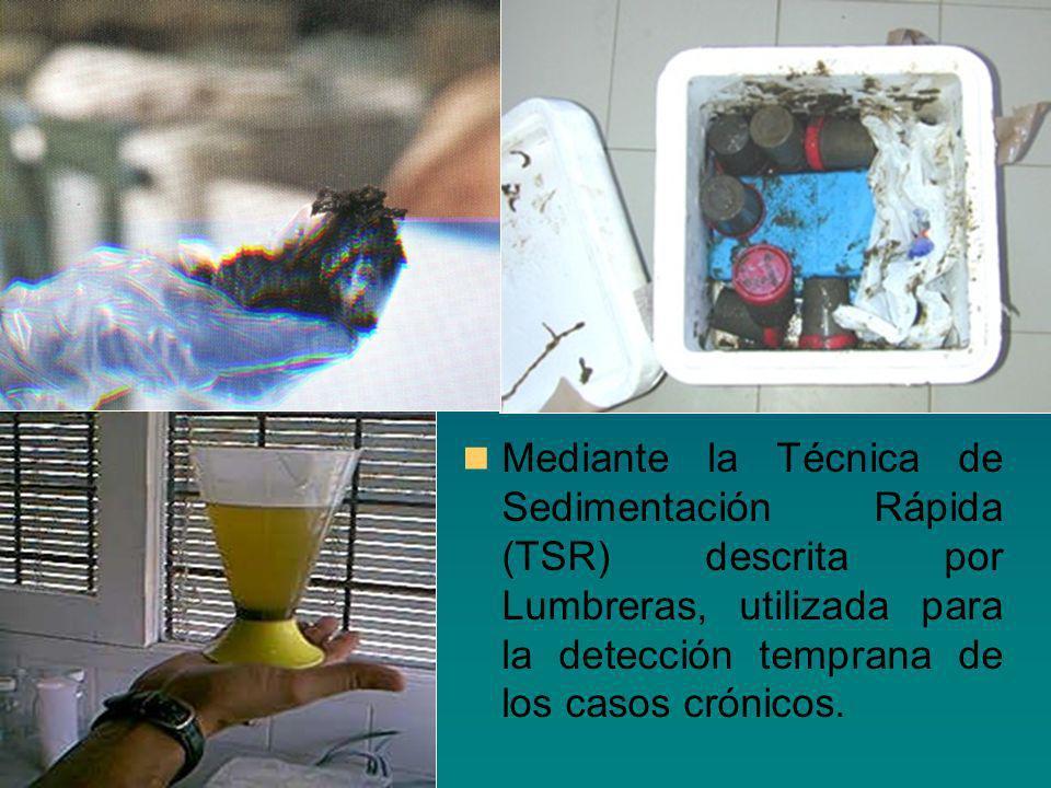 Mediante la Técnica de Sedimentación Rápida (TSR) descrita por Lumbreras, utilizada para la detección temprana de los casos crónicos.