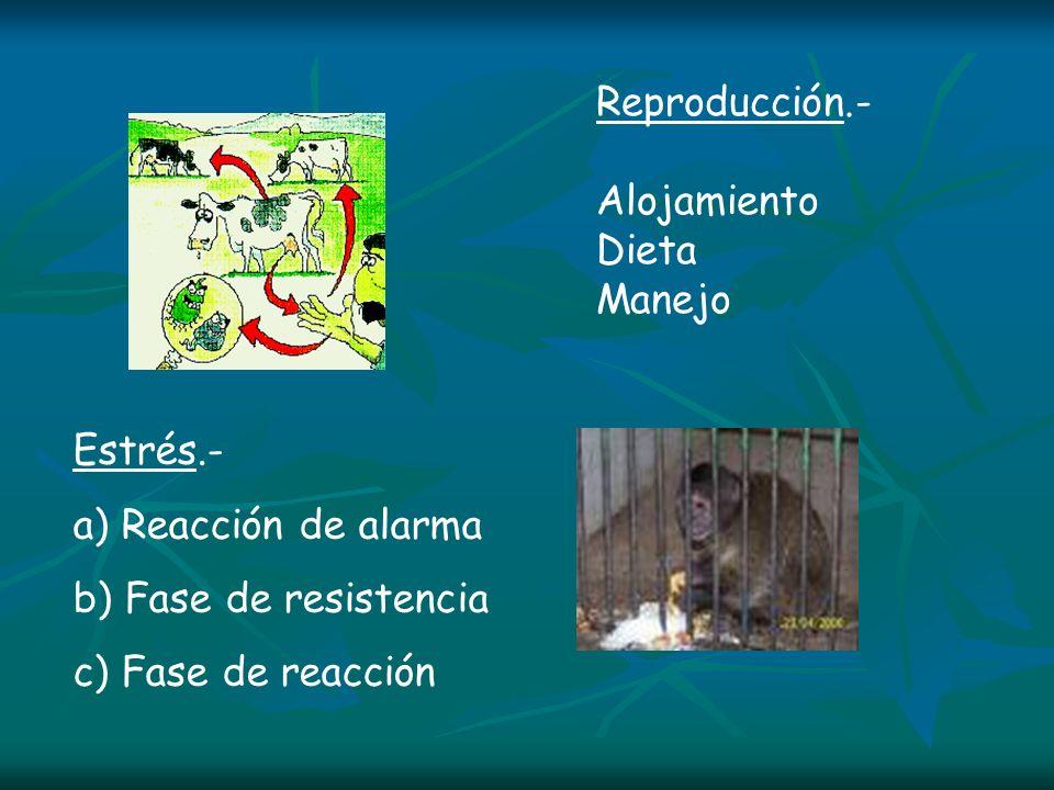 Estrés.- a) Reacción de alarma b) Fase de resistencia c) Fase de reacción Reproducción.- Alojamiento Dieta Manejo