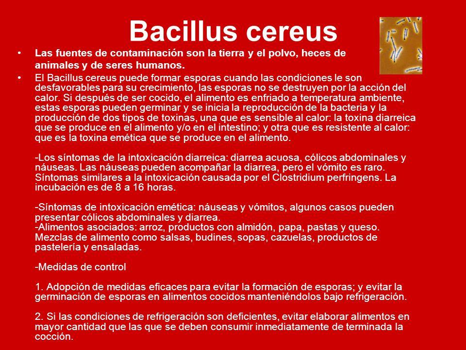 Bacillus cereus Las fuentes de contaminación son la tierra y el polvo, heces de animales y de seres humanos. El Bacillus cereus puede formar esporas c