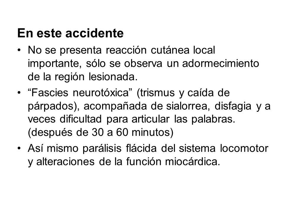 En este accidente No se presenta reacción cutánea local importante, sólo se observa un adormecimiento de la región lesionada. Fascies neurotóxica (tri
