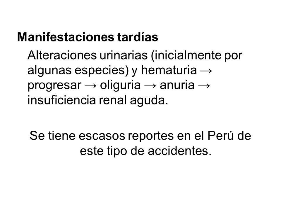 Manifestaciones tardías Alteraciones urinarias (inicialmente por algunas especies) y hematuria progresar oliguria anuria insuficiencia renal aguda. Se