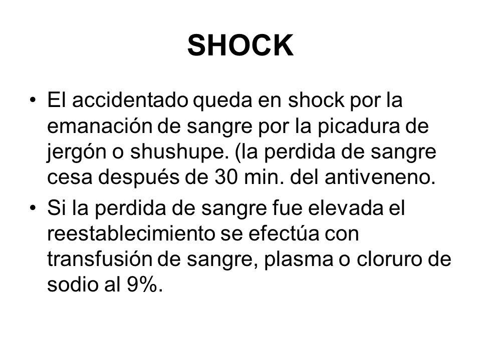 SHOCK El accidentado queda en shock por la emanación de sangre por la picadura de jergón o shushupe. (la perdida de sangre cesa después de 30 min. del