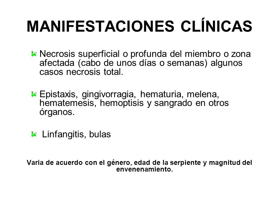 MANIFESTACIONES CLÍNICAS Necrosis superficial o profunda del miembro o zona afectada (cabo de unos días o semanas) algunos casos necrosis total. Epist