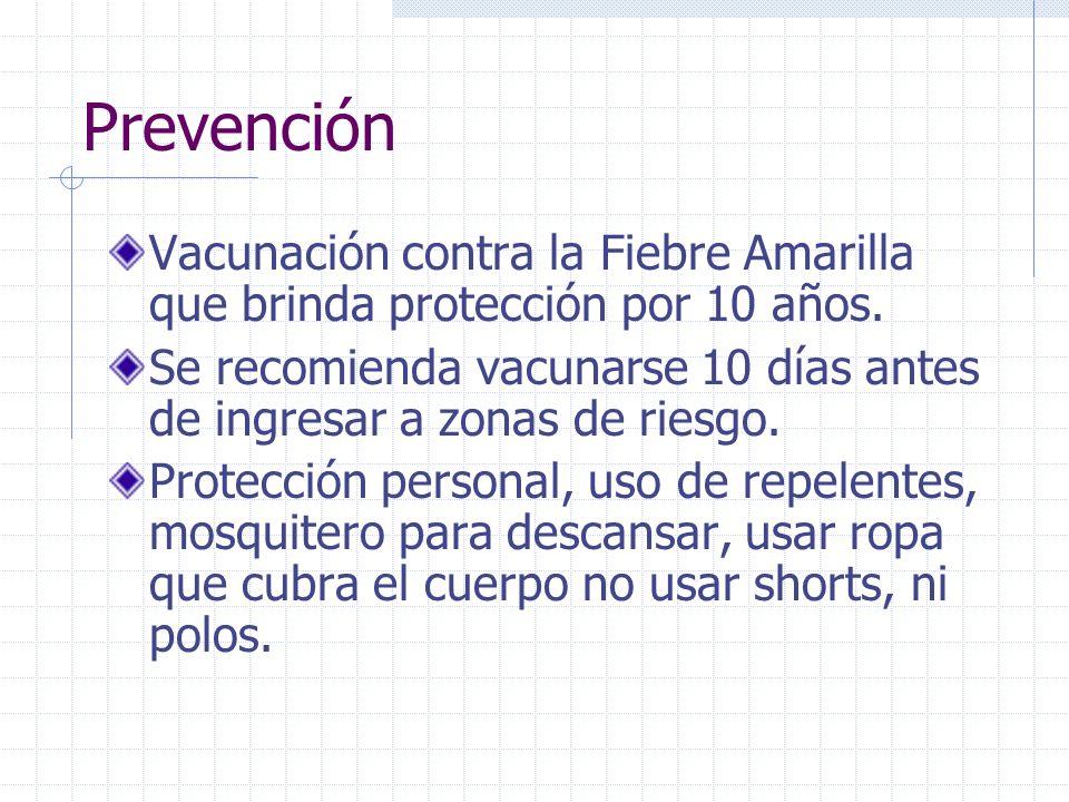 Prevención Vacunación contra la Fiebre Amarilla que brinda protección por 10 años. Se recomienda vacunarse 10 días antes de ingresar a zonas de riesgo