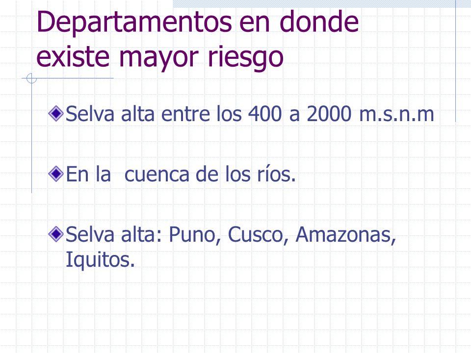 Departamentos en donde existe mayor riesgo Selva alta entre los 400 a 2000 m.s.n.m En la cuenca de los ríos. Selva alta: Puno, Cusco, Amazonas, Iquito