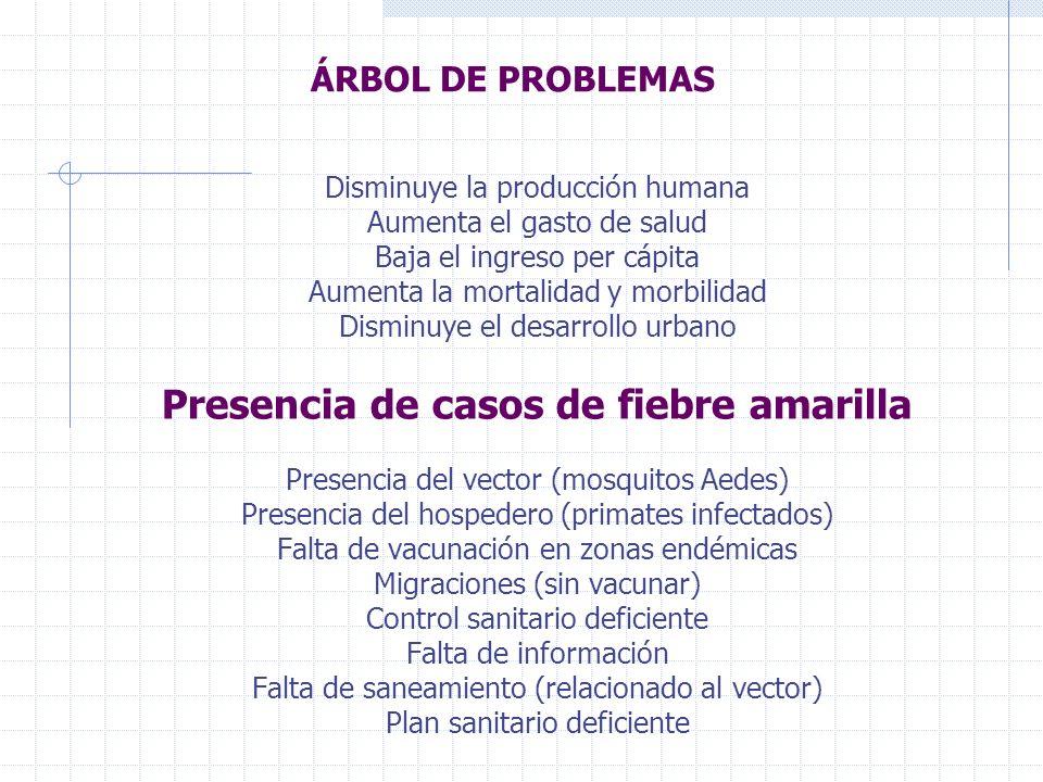 ÁRBOL DE PROBLEMAS Disminuye la producción humana Aumenta el gasto de salud Baja el ingreso per cápita Aumenta la mortalidad y morbilidad Disminuye el