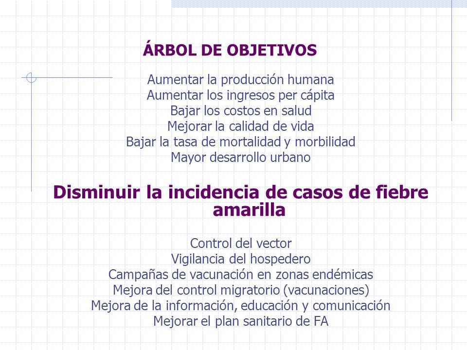 ÁRBOL DE OBJETIVOS Aumentar la producción humana Aumentar los ingresos per cápita Bajar los costos en salud Mejorar la calidad de vida Bajar la tasa d