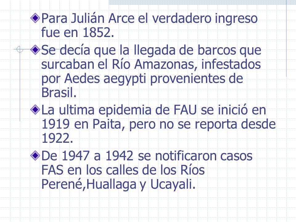 Para Julián Arce el verdadero ingreso fue en 1852. Se decía que la llegada de barcos que surcaban el Río Amazonas, infestados por Aedes aegypti proven