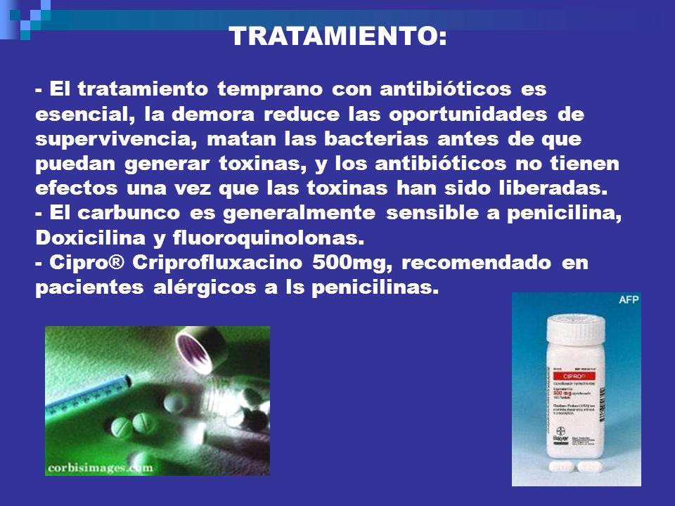 TRATAMIENTO: - El tratamiento temprano con antibióticos es esencial, la demora reduce las oportunidades de supervivencia, matan las bacterias antes de