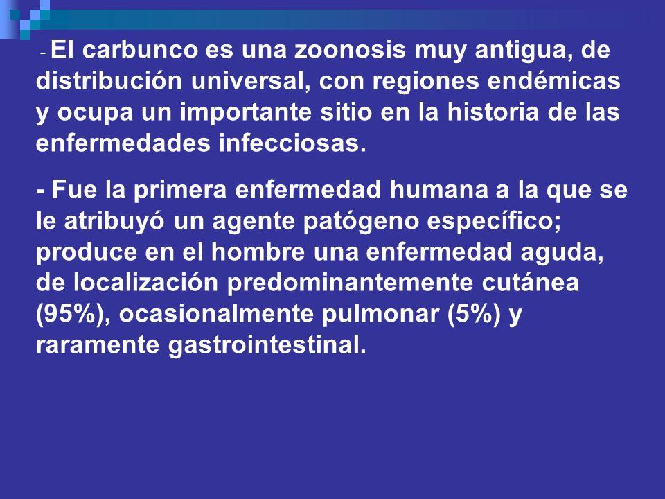 - El carbunco es una zoonosis muy antigua, de distribución universal, con regiones endémicas y ocupa un importante sitio en la historia de las enferme