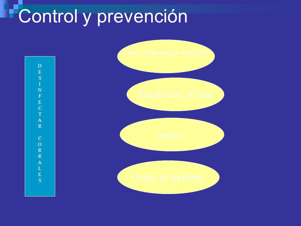 Control y prevención DESINFECTARCORRALESDESINFECTARCORRALES Lejia + hidroxido de sodio10% Ebulllision 30 min Suelos Oxido de metileno