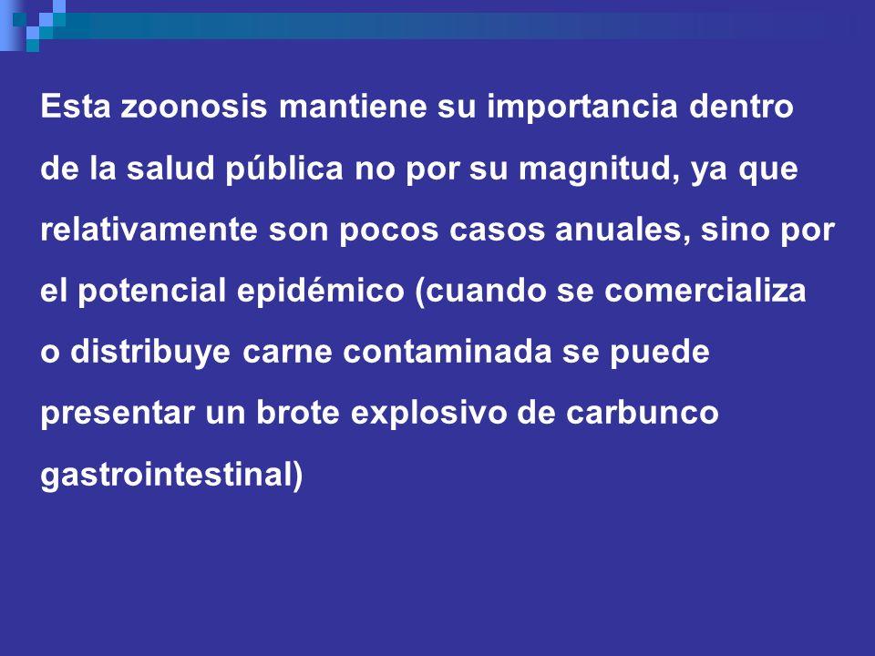 Esta zoonosis mantiene su importancia dentro de la salud pública no por su magnitud, ya que relativamente son pocos casos anuales, sino por el potenci