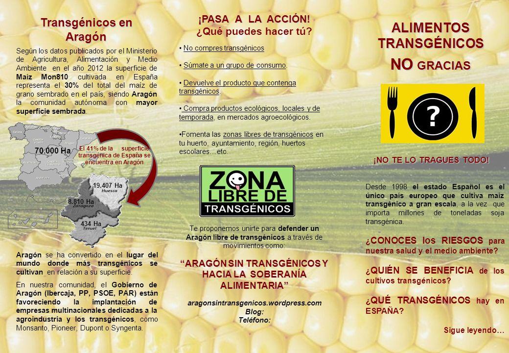 Según los datos publicados por el Ministerio de Agricultura, Alimentación y Medio Ambiente en el año 2012 la superficie de Maíz Mon810 cultivada en España representa el 30% del total del maíz de grano sembrado en el país, siendo Aragón la comunidad autónoma con mayor superficie sembrada.