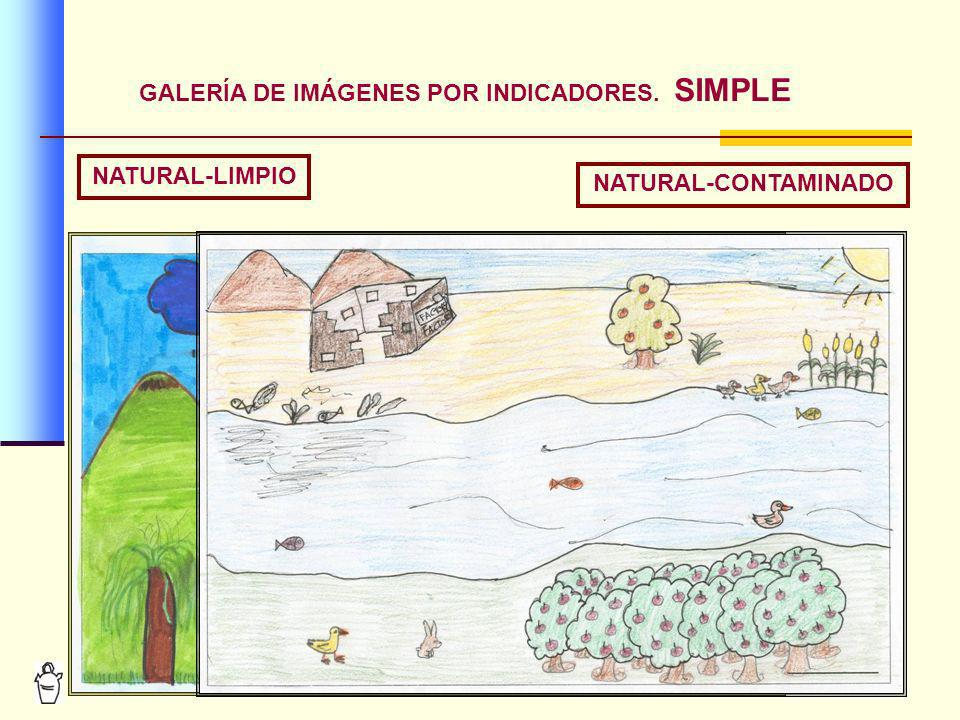 10 GALERÍA DE IMÁGENES POR INDICADORES. SIMPLE NATURAL-LIMPIO NATURAL-CONTAMINADO
