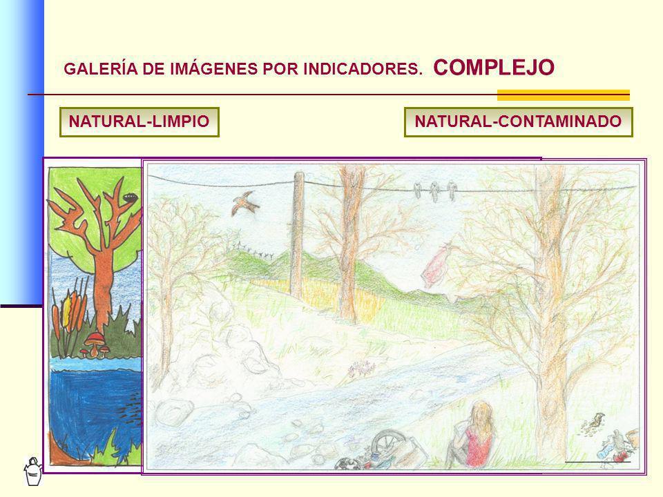 12 GALERÍA DE IMÁGENES POR INDICADORES. COMPLEJO NATURAL-LIMPIONATURAL-CONTAMINADO