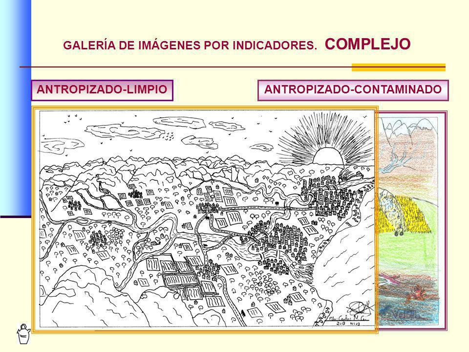 13 GALERÍA DE IMÁGENES POR INDICADORES. COMPLEJO ANTROPIZADO-LIMPIOANTROPIZADO-CONTAMINADO