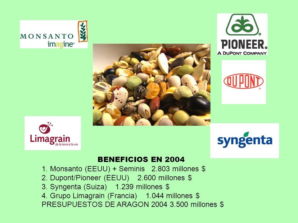 BENEFICIOS EN 2004 1. Monsanto (EEUU) + Seminis 2.803 millones $ 2. Dupont/Pioneer (EEUU) 2.600 millones $ 3. Syngenta (Suiza) 1.239 millones $ 4. Gru