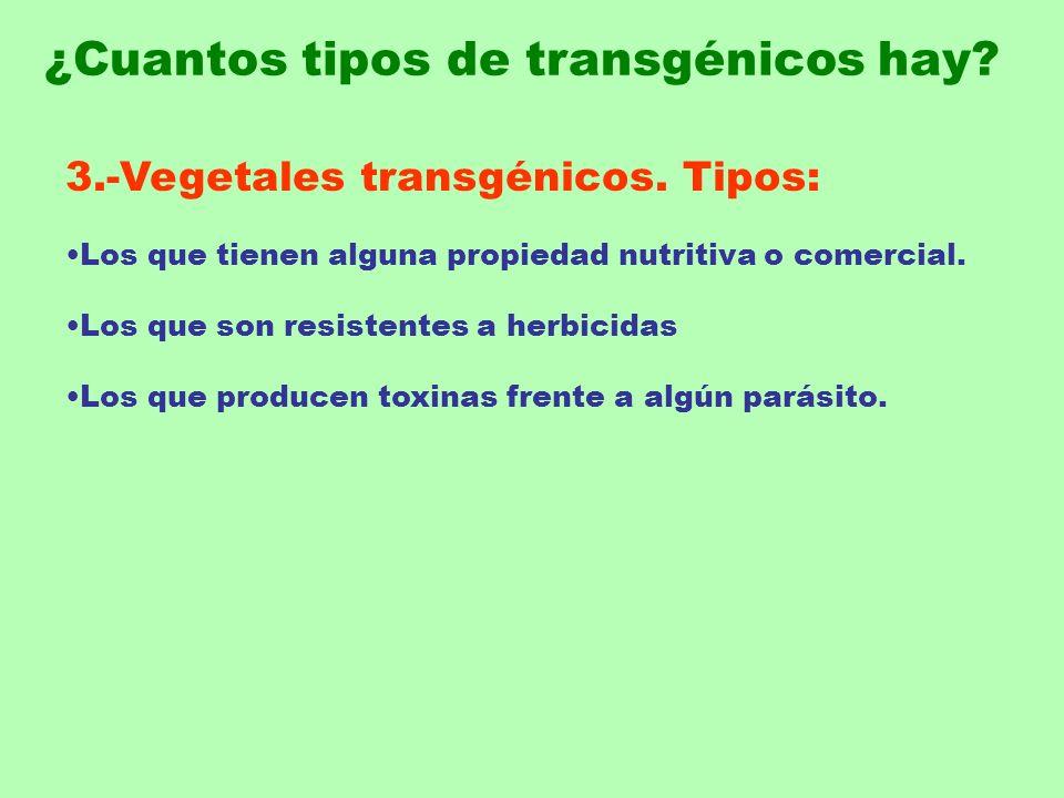 3.-Vegetales transgénicos. Tipos: Los que tienen alguna propiedad nutritiva o comercial. Los que son resistentes a herbicidas Los que producen toxinas
