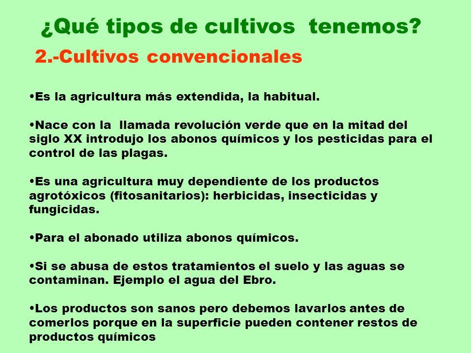 2.-Cultivos convencionales Es la agricultura más extendida, la habitual. Nace con la llamada revolución verde que en la mitad del siglo XX introdujo l