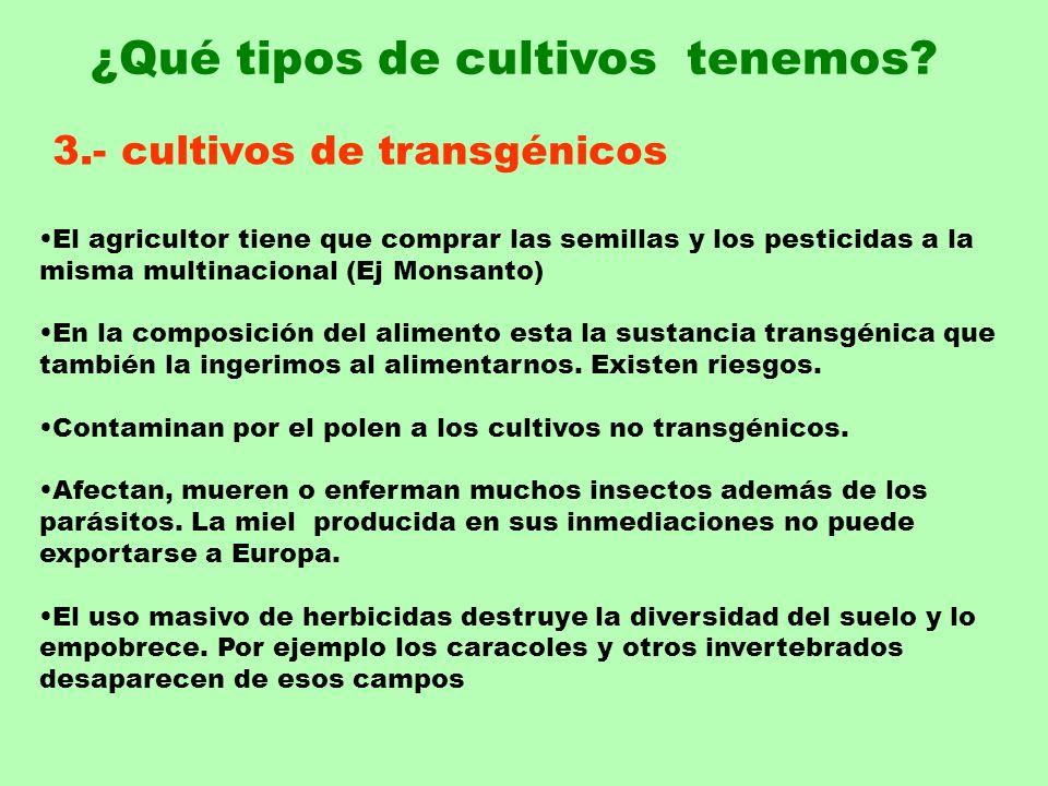 3.- cultivos de transgénicos El agricultor tiene que comprar las semillas y los pesticidas a la misma multinacional (Ej Monsanto) En la composición de