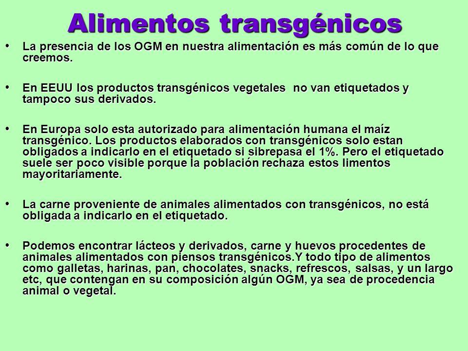 Alimentos transgénicos La presencia de los OGM en nuestra alimentación es más común de lo que creemos. La presencia de los OGM en nuestra alimentación