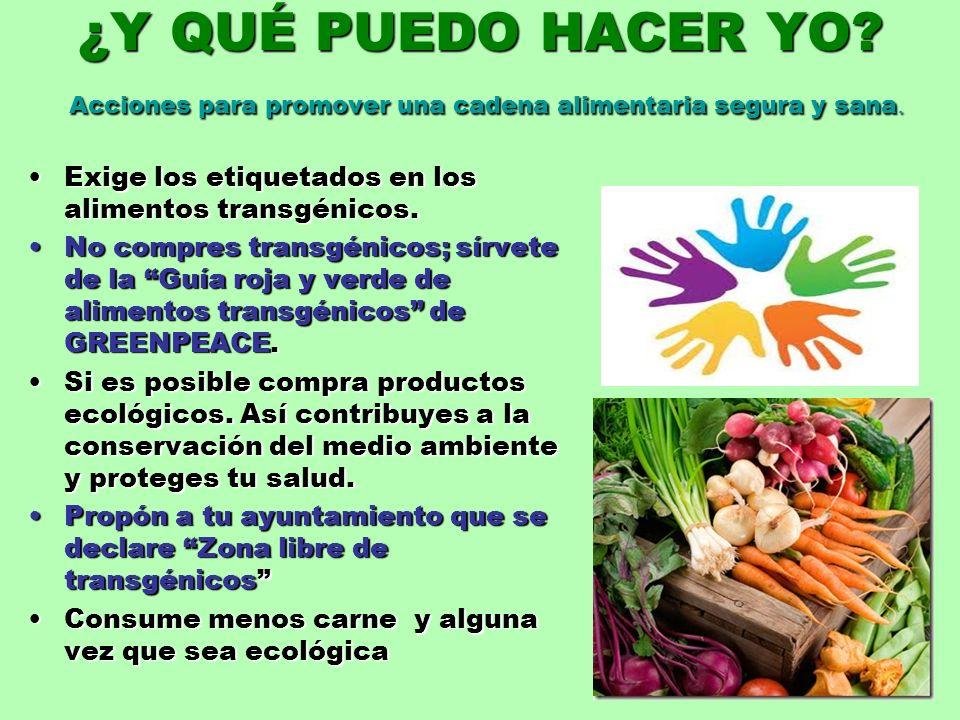 ¿Y QUÉ PUEDO HACER YO? Acciones para promover una cadena alimentaria segura y sana. Exige los etiquetados en los alimentos transgénicos.Exige los etiq