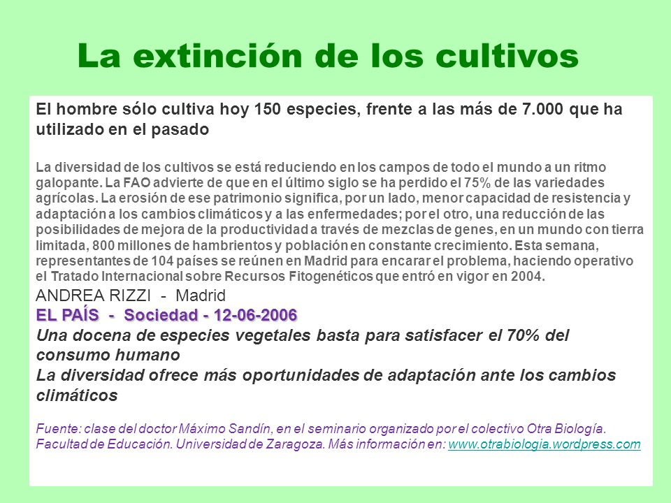 La extinción de los cultivos El hombre sólo cultiva hoy 150 especies, frente a las más de 7.000 que ha utilizado en el pasado La diversidad de los cul
